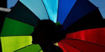 """Desde mayo de 2013, las parejas del mismo sexo tienen derecho a tener el estatuto de """"matrimonio"""", de acuerdo a una sentencia de la Corte Federal. Foto:Getty Images"""