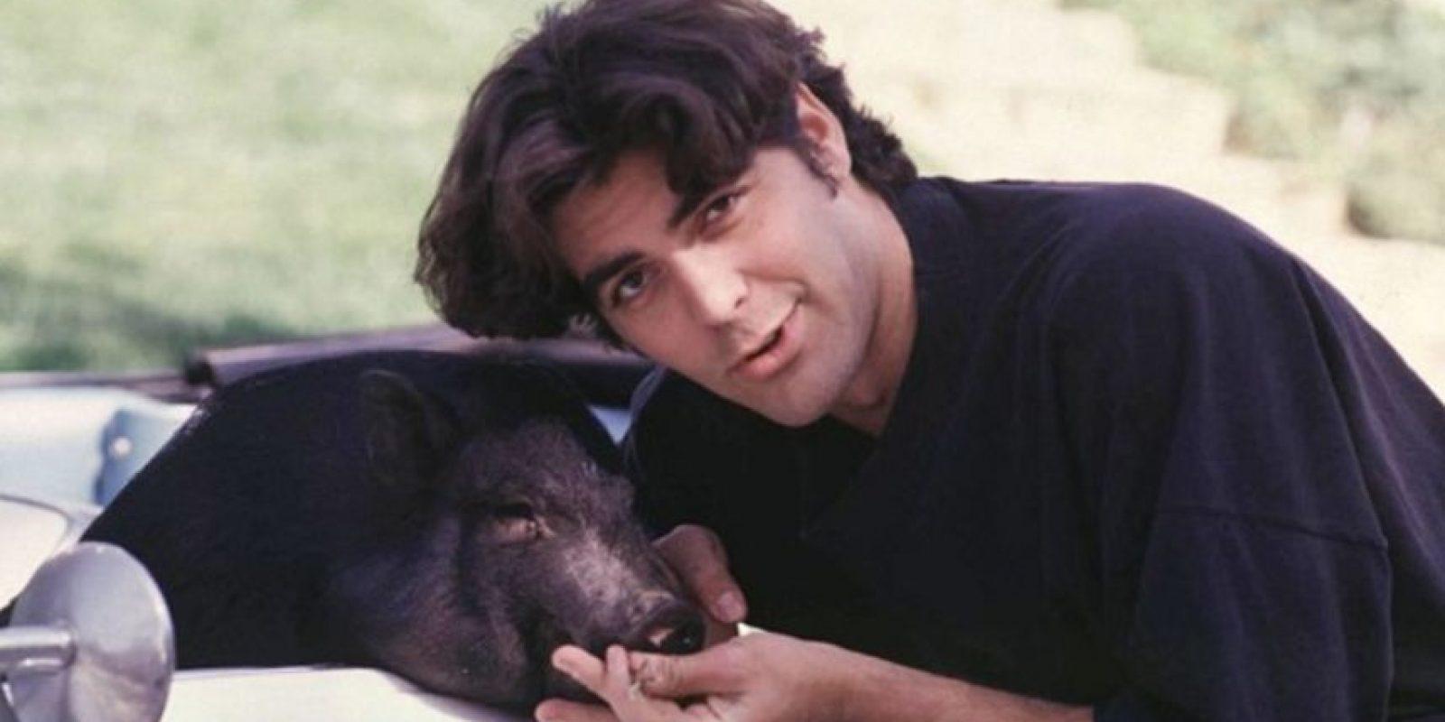 George Clooney y su puerquito Max, quien murió en 2006. Foto:Getty Images