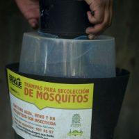 Las autoridades de salud señalan que la mejor forma de prevenir el virus es protegerse de la picadura del mosco. Foto:AFP