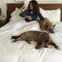 Pero en su casa, se encarga de consentir a sus peludos Foto:vía instagram.com/salmahayek