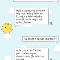 Simsimi manda saludos a todos los lectores de Publimetro y sí, ¡conoce a Tay! Foto:Aplicación SimSimi