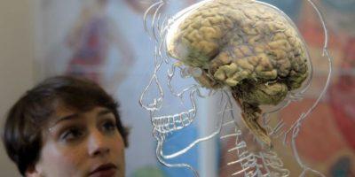 Memoramas, retos mentales, crucigramas, etc. Foto:Getty Images