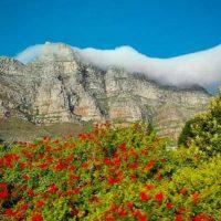 1. Sudáfrica (África) Foto:Vía instagram.com