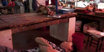 Se lleva a cabo en Yulin al sur de China. Foto:vía AFP