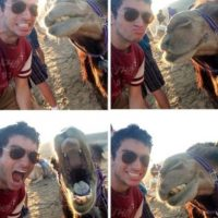 Con un camello Foto:Imgur
