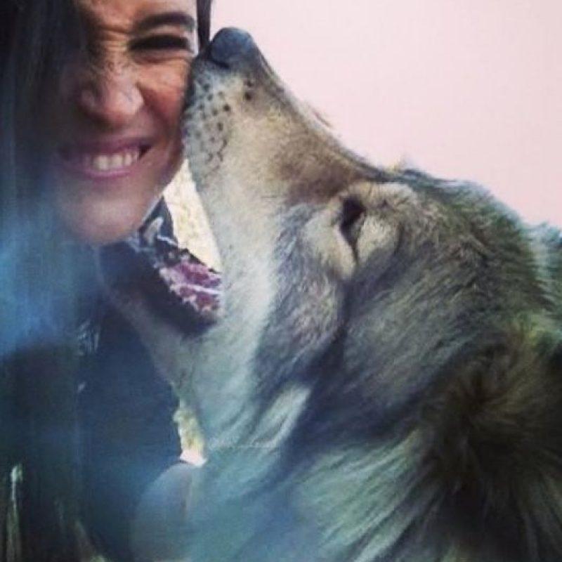 Con un lobo Foto:Imgur