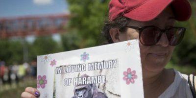 Las redes los acusan de causar la muerte del animal. Foto:vía AP