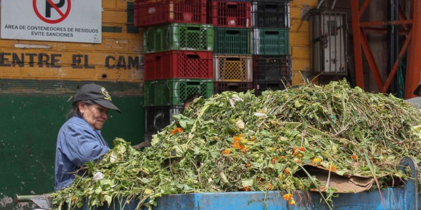 Los 'rebuscadores' de comida llegan desde las ocho o nueve de la mañana a Corabastos. Foto:Sofía Toscano-Publimetro