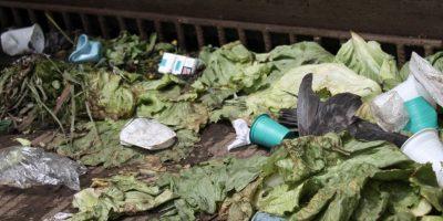 Comida y basura en Corabastos Foto:Sofía Toscano-Publimetro