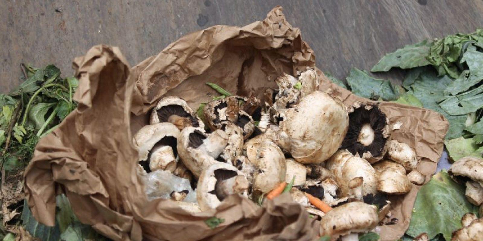 En los contenedores se pueden encontrar toda clase de alimentos. Foto:Sofía Toscano-Publimetro