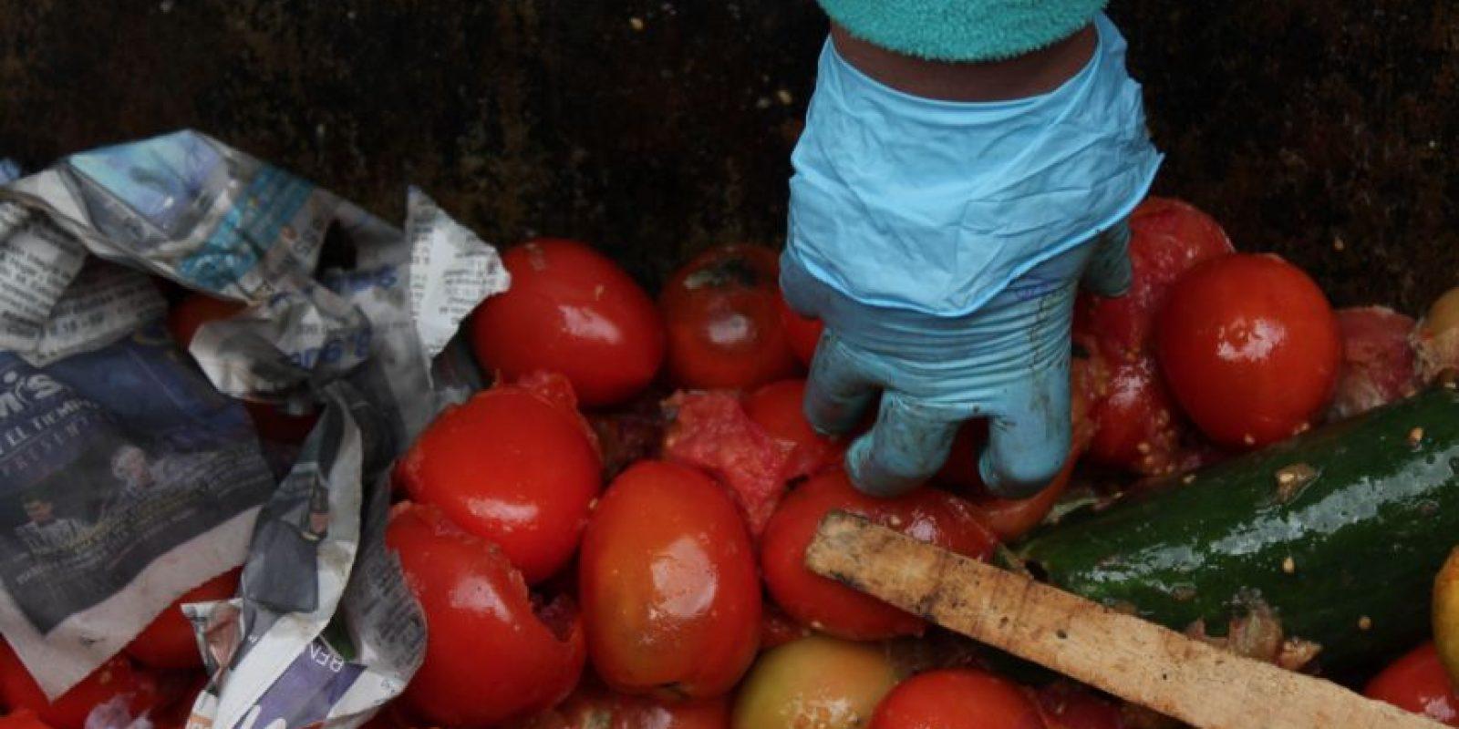 Los tomates son los que más abundan en la central de abasto. Foto:Sofía Toscano-Publimetro