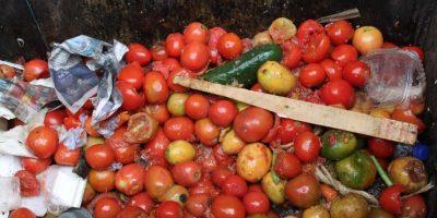 Al interior de los contenedores puede encontrarse cualquier cantidad de frutas y verduras. Foto:Sofía Toscano-Publimetro