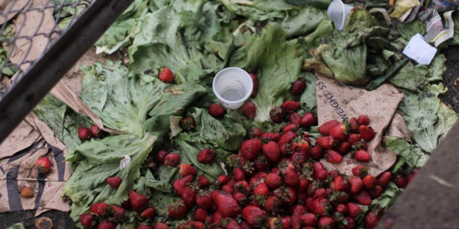 Frutas y verduras se pueden encontrar en el contenedor mezclados con otros productos. Foto:Sofía Toscano-Publimetro