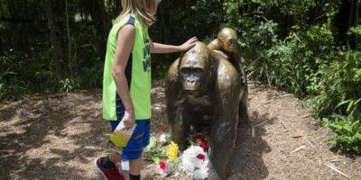 También se le rindió tributo en el zoológico de Cincinnati Foto:AP