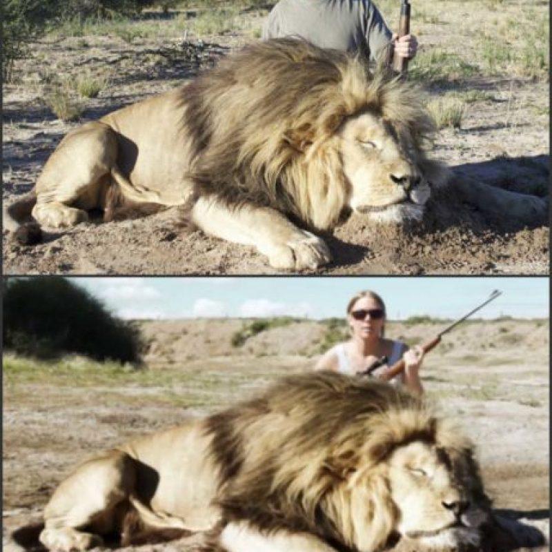El video está realizado a partir de la composición de una foto real. Foto:Snopes.com