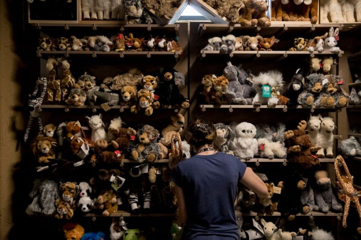 Vende animales… de peluche Foto: Getty Images