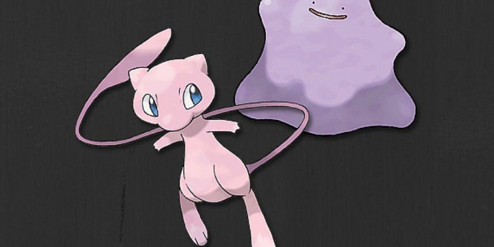 Mew y Ditto Foto:Pokémon