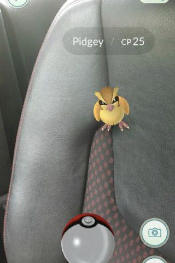 Dejar escapar los primeros tres Pokémon que aparezcan. El cuarto que encontrarán será el popular ratón eléctrico. Foto:Nintendo
