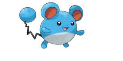 Marill Foto:Wiki Pokémon