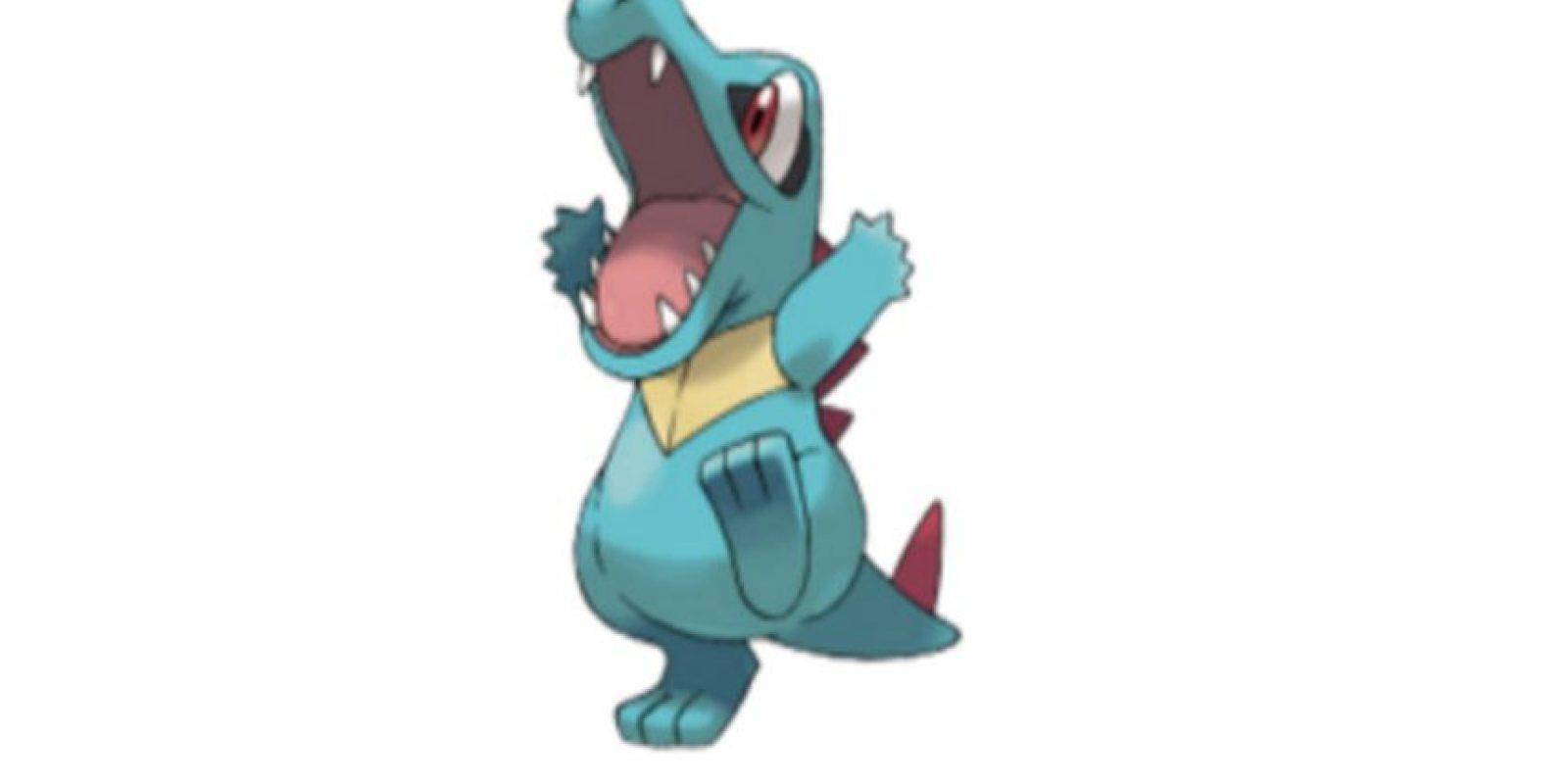 Totodile Foto:Wiki Pokémon