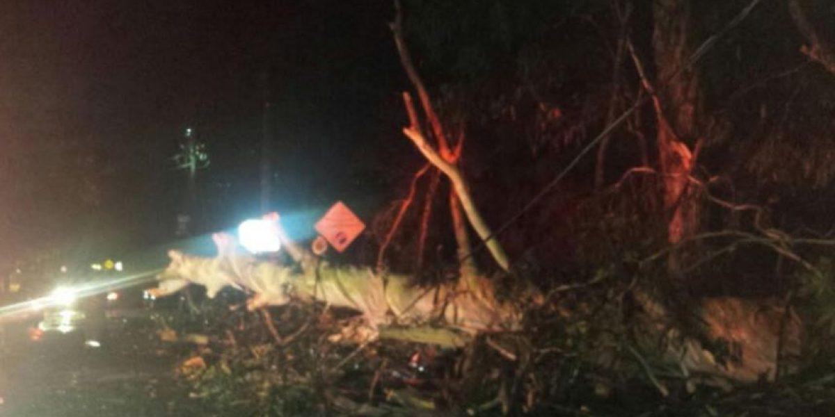 Emergencia en Antioquia por fuertes lluvias