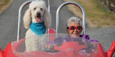 Norma Bauerschmidt falleció a los 91 años Foto:Facebook.com/DrivingMissNorma