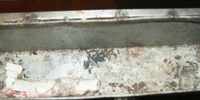 Rastros de ratones en algunos carros de comida ambulante Foto:Cortesía
