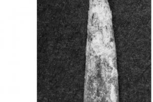 También se encontraron restos de posibles herramientas Foto:Giles Hamm – Phys