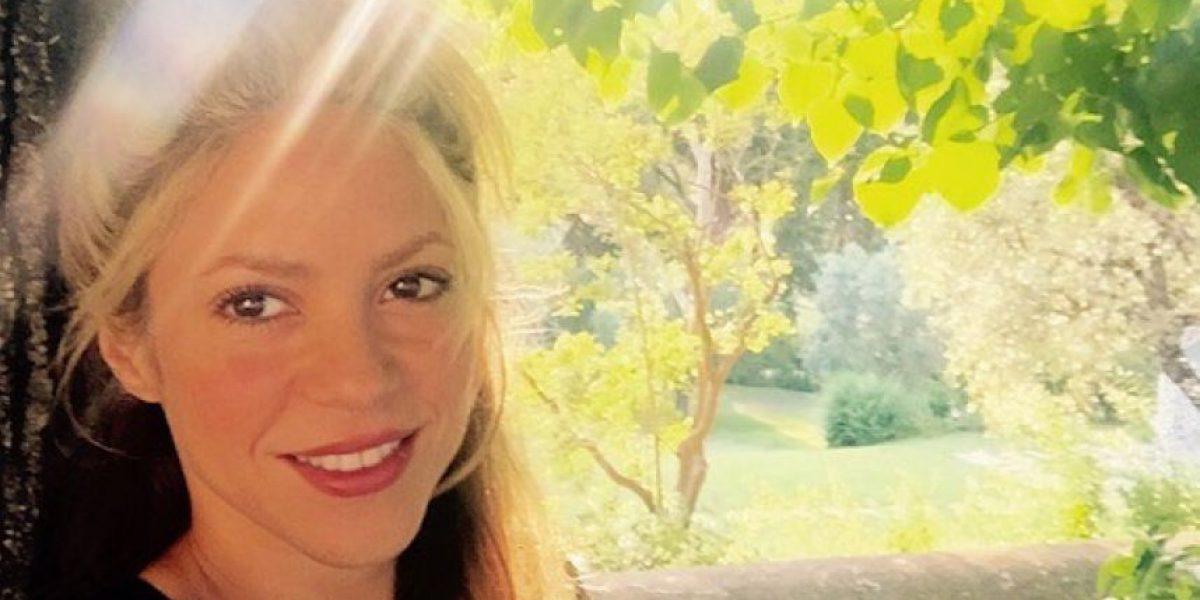 Shakira no estará en los Grammy Latinos