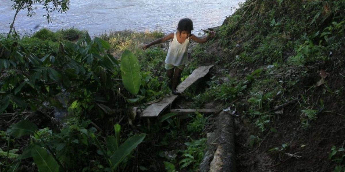 El país repudia muerte de niña indígena por explosivo del Eln