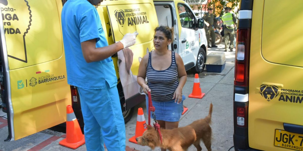 Sobre ruedas atenderán a las mascotas en Barranquilla