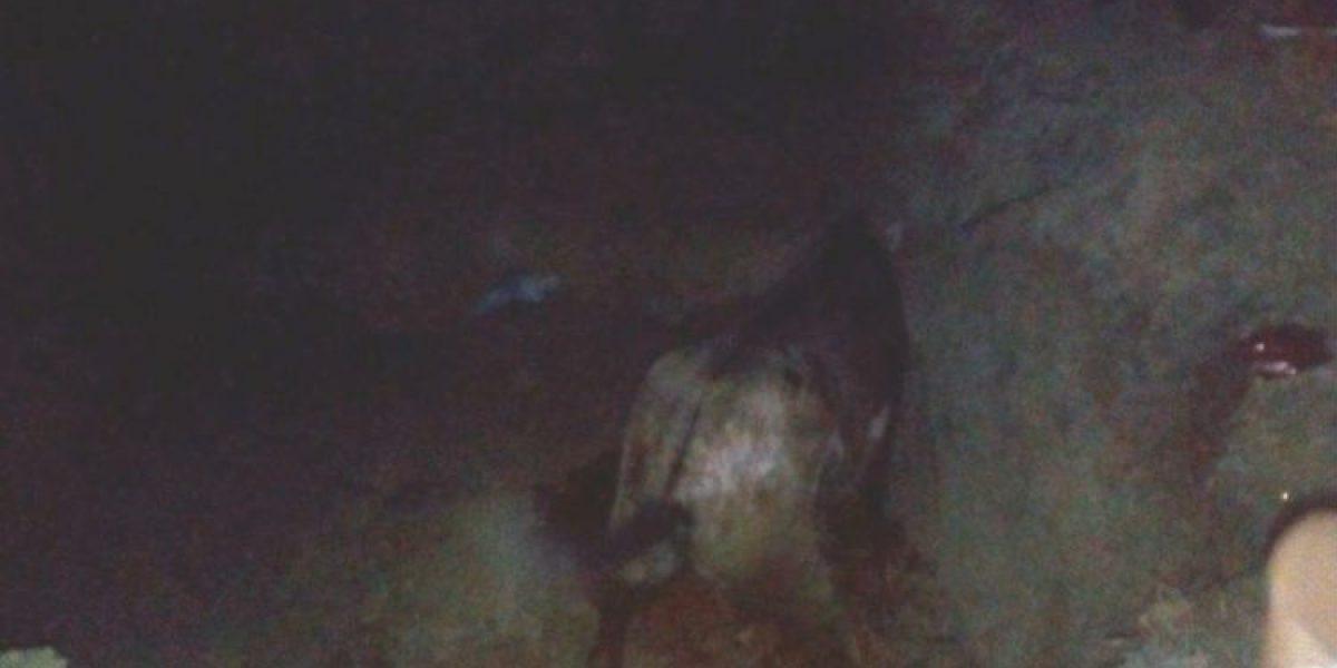¡Bárbaro! Enterraron a un caballo vivo en corraleja en Sahagún