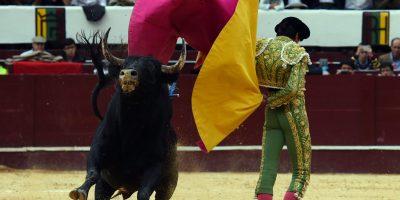 Cinco puntos destacados del proyecto para eliminar las corridas de toros