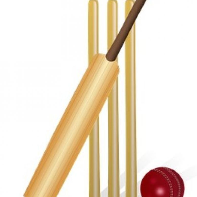 Palo de cricket. Foto:emojipedia.org