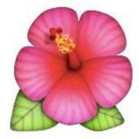 Flor. Foto:emojipedia.org