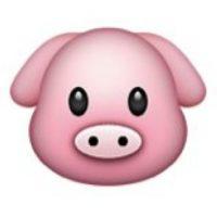 Rostro de cerdito. Foto:emojipedia.org