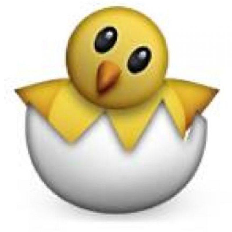 Pollito saliendo del cascarón. Foto:emojipedia.org