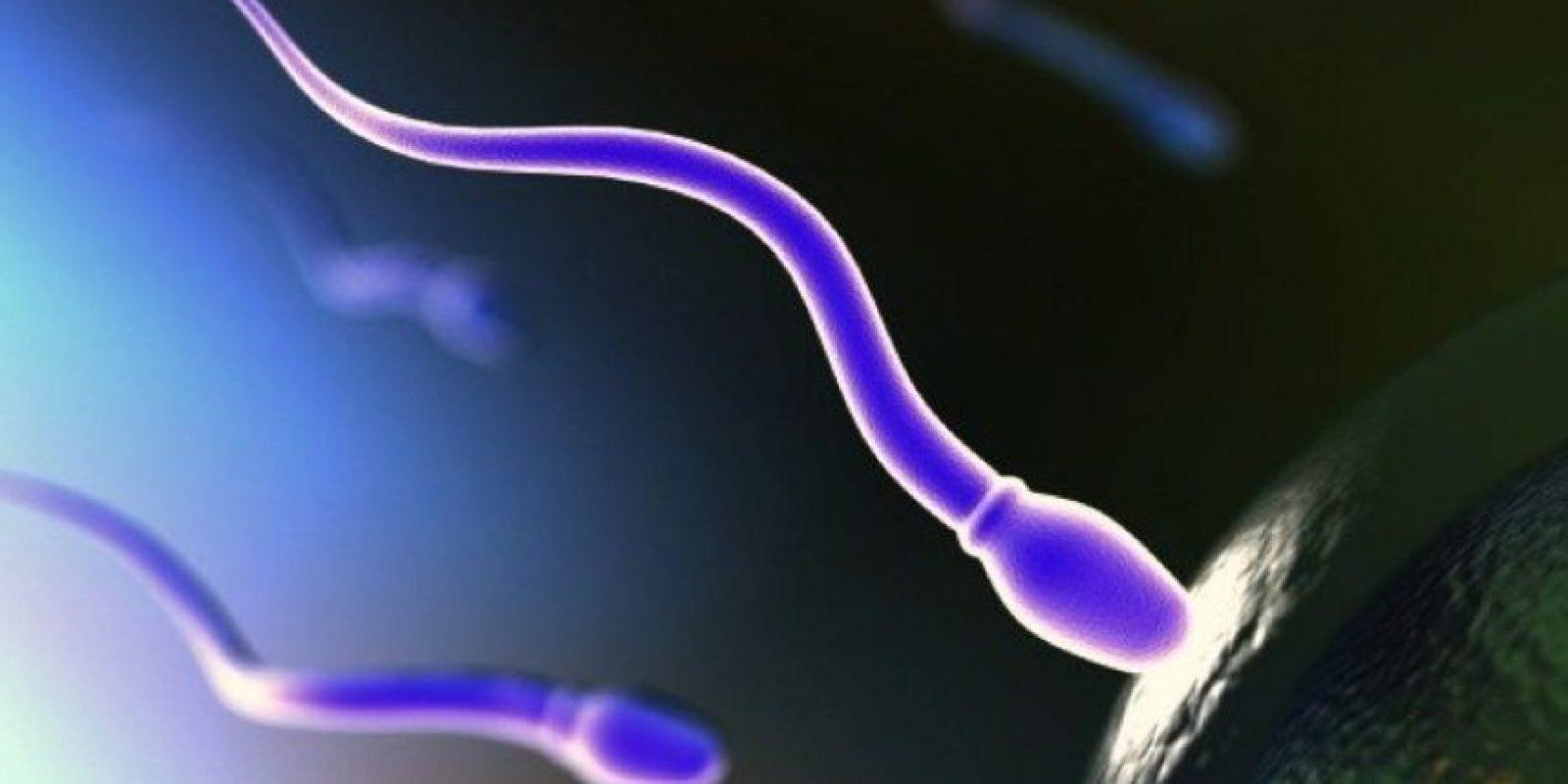 5. Existen muchos factores que podrían ser la causa de la infertilidad. Las hormonas, la disfunción sexual o alguna obstrucción en el aparato reproductor masculino son algunos de los más comunes. Algunos problemas pueden ser de origen genético, mientras que otros no, pero lo importante es acudir al médico y recibir tratamiento lo antes posible. Foto:Pinterest