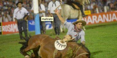 3. Festival de Doma Foto:Organización argentina de Derechos Animales Especismo Cero