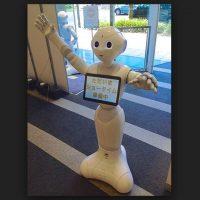 """Pepper no fue diseñado en primera instancia para ser un robot doméstico. Su objetivo principal era """"hacer feliz a la gente"""", mejorar la vida de las personas, facilitar las relaciones, divertirse con la gente y conectar a las personas con el mundo exterior. Los creadores esperan que los desarrolladores independientes crear nuevos contenidos y usos para él Foto:Wikicommons"""