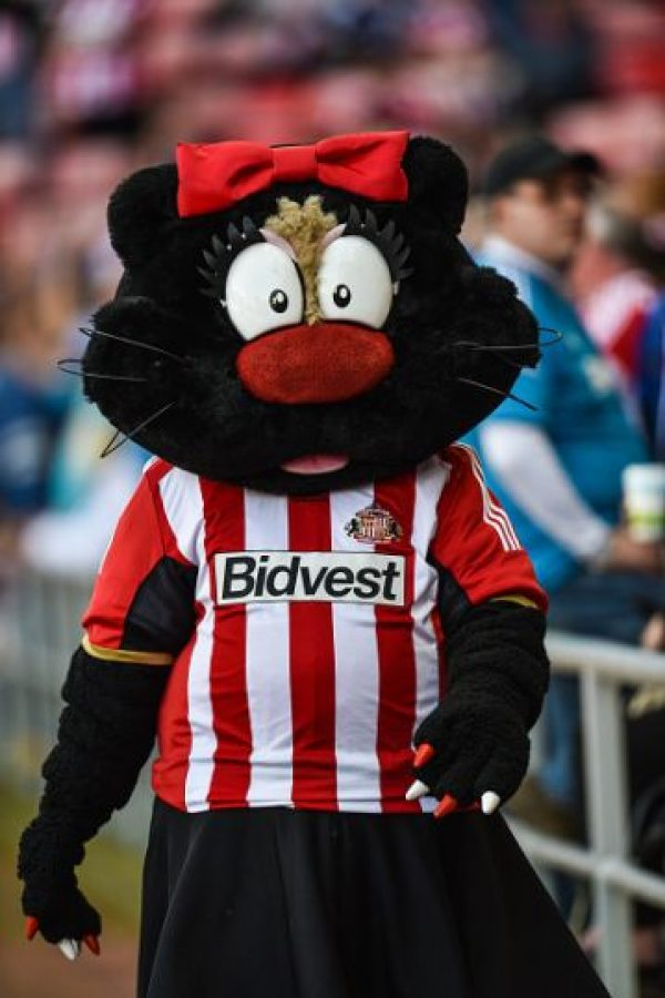 """Ahora entendemos porqué al Sunderland le llaman """"The Black Cats"""". Foto:Getty Images"""