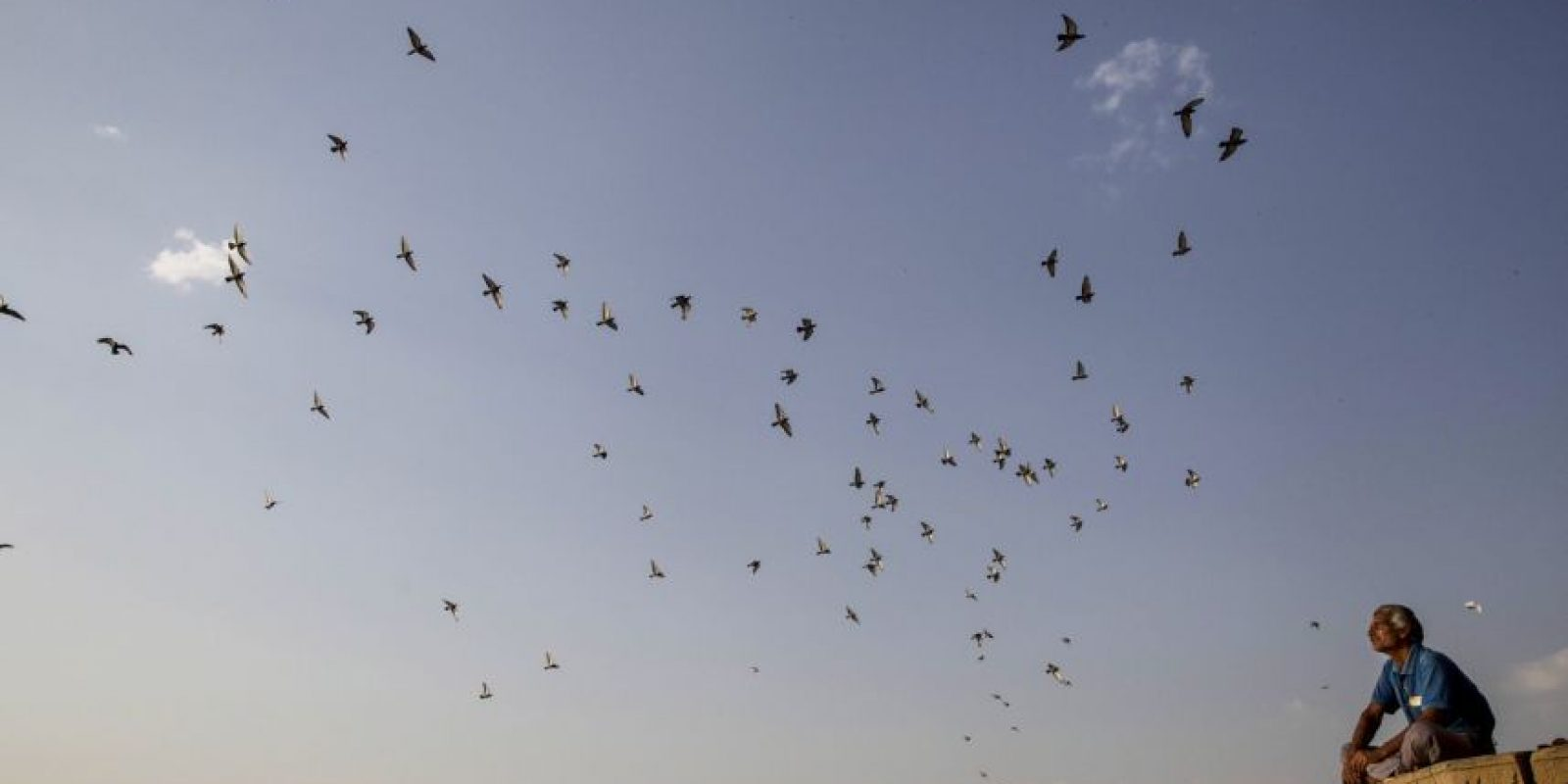 11. Firozabad, en India, con 96 ug/m3 promedio al año. Foto:Getty Images