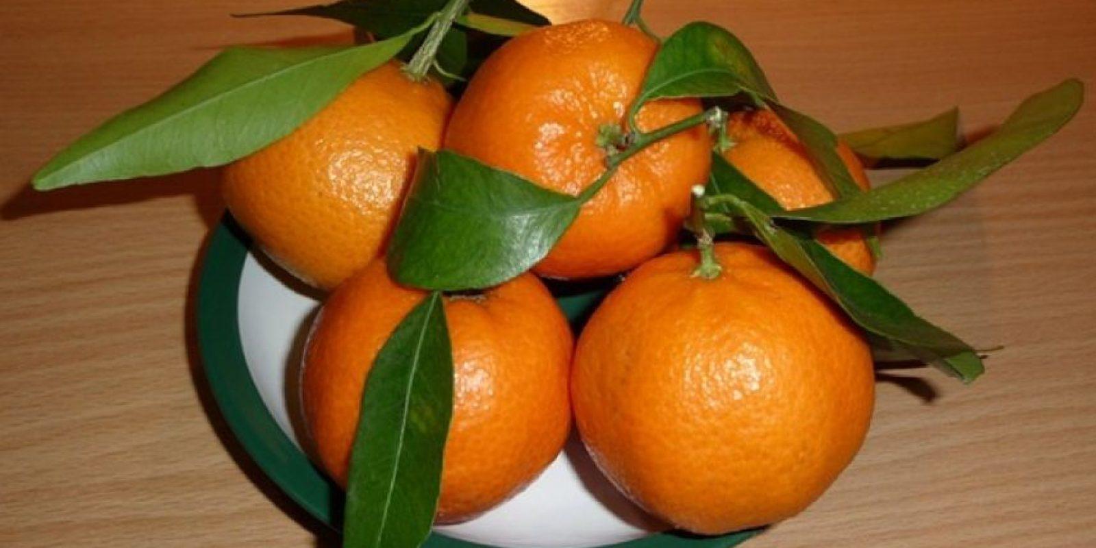 6. Cáscara de mandarina. Foto:Wikimedia
