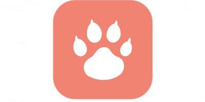 Tindog: El nuevo Tinder para perros