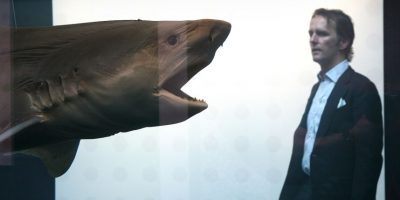 """Científicos encuentran """"tiburones mutantes"""" nadando en cráter volcánico"""