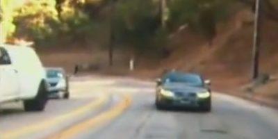 VIDEO: Conductor manejó por más de 3 kilómetros en reversa en medio del tráfico