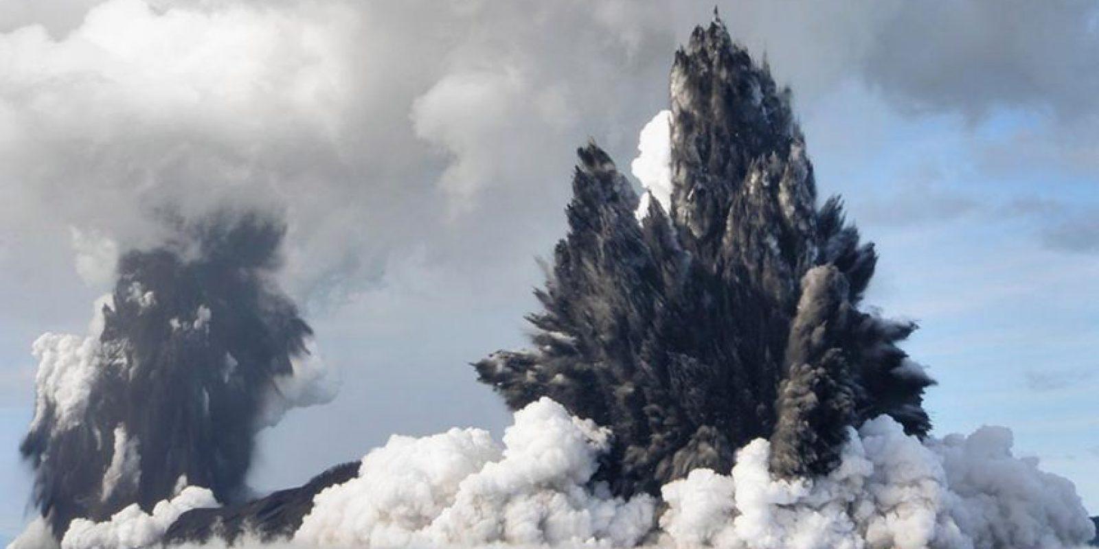 Tienen aproximadamente 50 millones de años. Foto:Getty Images