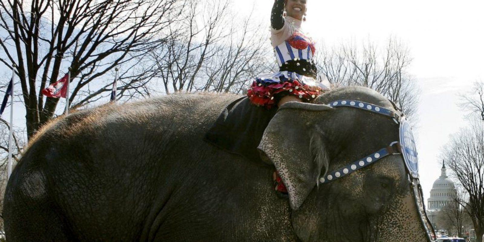 Por otro lado, el Partido Animalista en España también busca prohibir esta práctica Foto:Getty Images