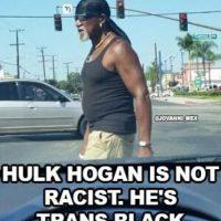 """Hulk Hogan no es racista. Es """"trans-negro"""". Foto:Vía facebook.com/WWEMEMES"""