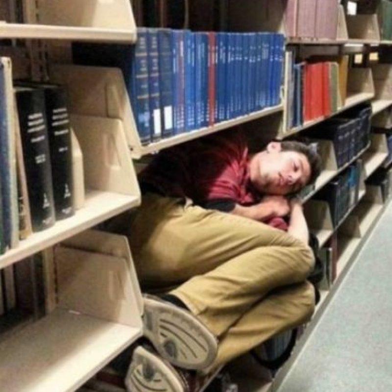 Cualquier lugar es bueno cuando se quiere dormir. Foto:Reddit